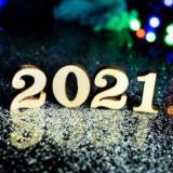 Develop Logs 2021